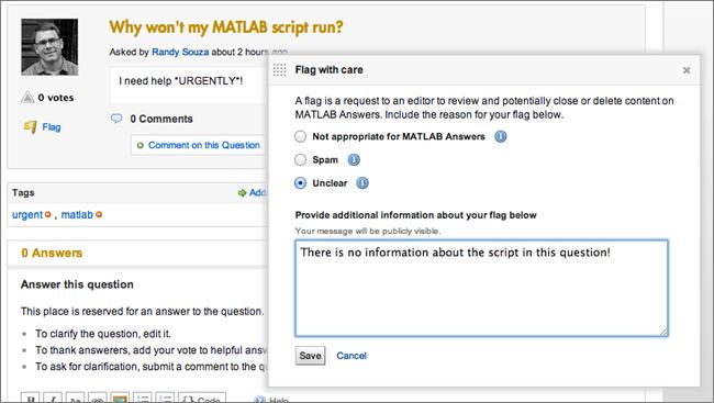 MATLAB Answers - Flag