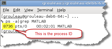 get Process ID