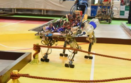 Team Automatons Builds a Quadruped Robot for the ABU Robocon 2019 Task